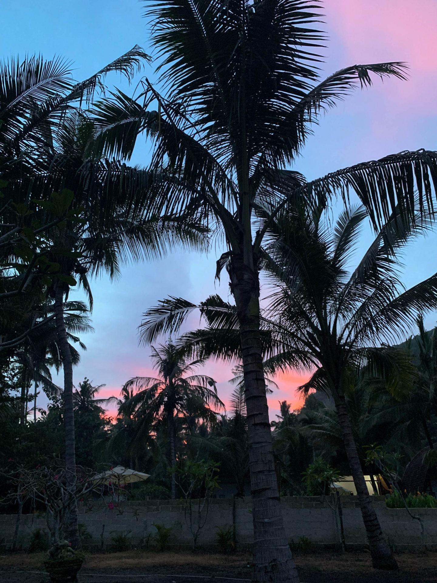vychod slunce sunrise bali nusa penida trip travelling brunettie island palmtrees